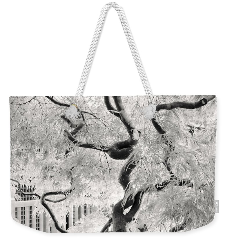 Bw Weekender Tote Bag featuring the photograph Dream Tree by Dorit Fuhg