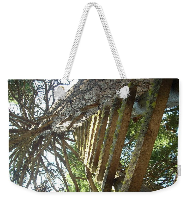 Ladder Weekender Tote Bag featuring the photograph Dream Up by Sara Stevenson