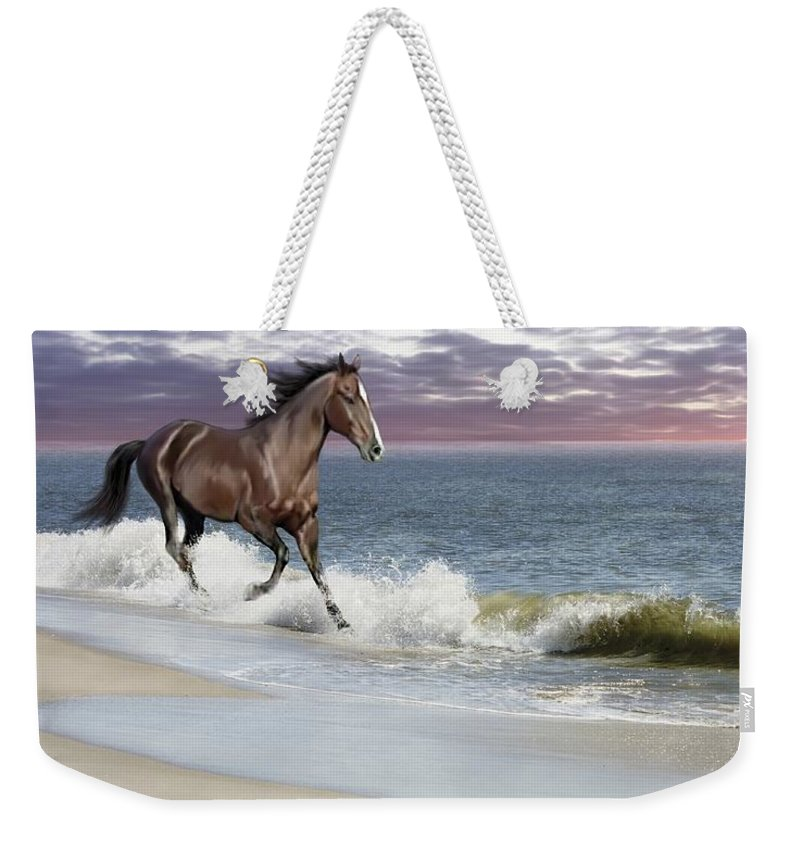 Landscape Weekender Tote Bag featuring the photograph Dreamer On The Beach by Barbara Hymer