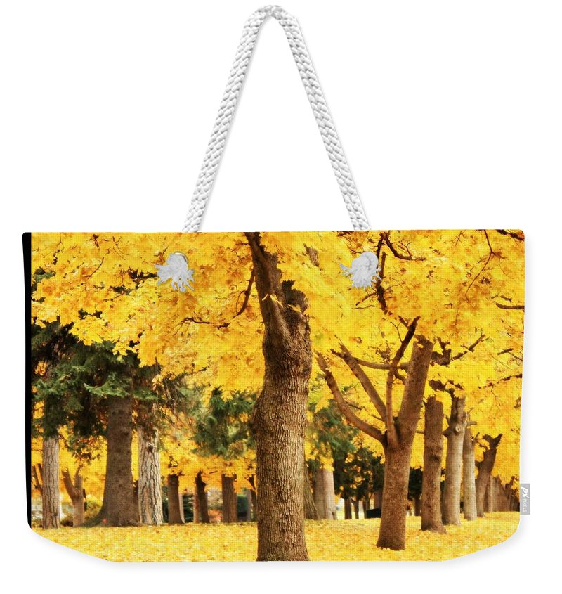 Yellow Weekender Tote Bag featuring the photograph Dreamy Autumn Gold by Carol Groenen