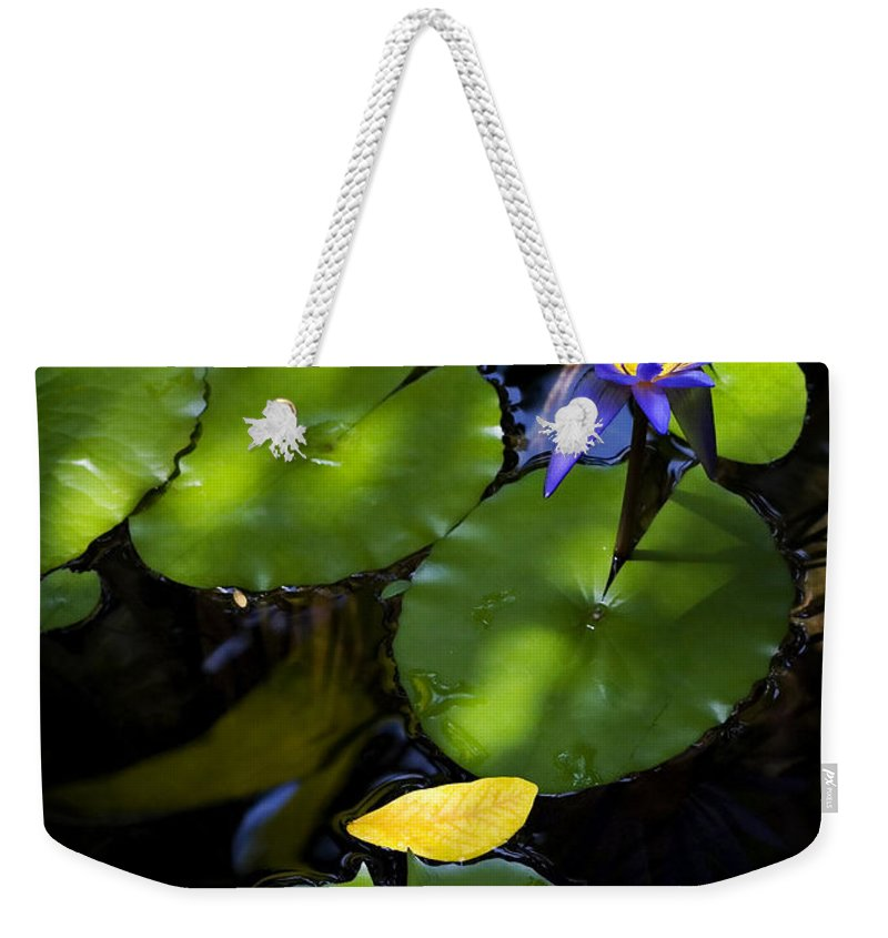 Lotus Weekender Tote Bag featuring the photograph Dreamy Lotus by Marilyn Hunt