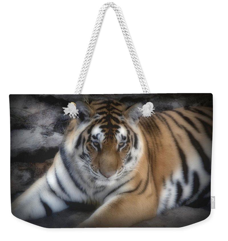Aminal Kingdom Weekender Tote Bag featuring the digital art Dreamy Tiger by Sandy Keeton
