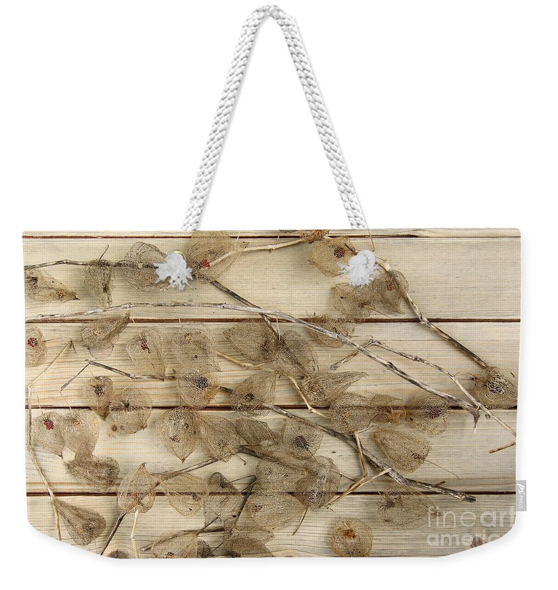 Dried Weekender Tote Bag featuring the photograph Dried Fruits Of The Cape Gooseberry by Michal Boubin