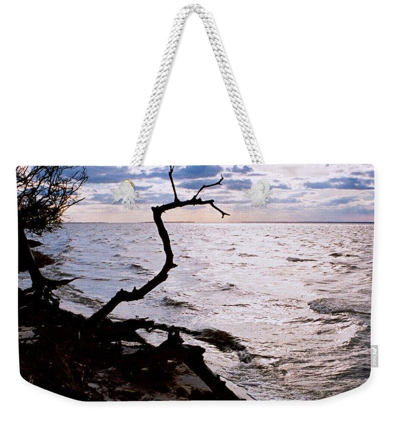 Barnegat Weekender Tote Bag featuring the photograph Driftwood Dragon-barnegat Bay by Steve Karol