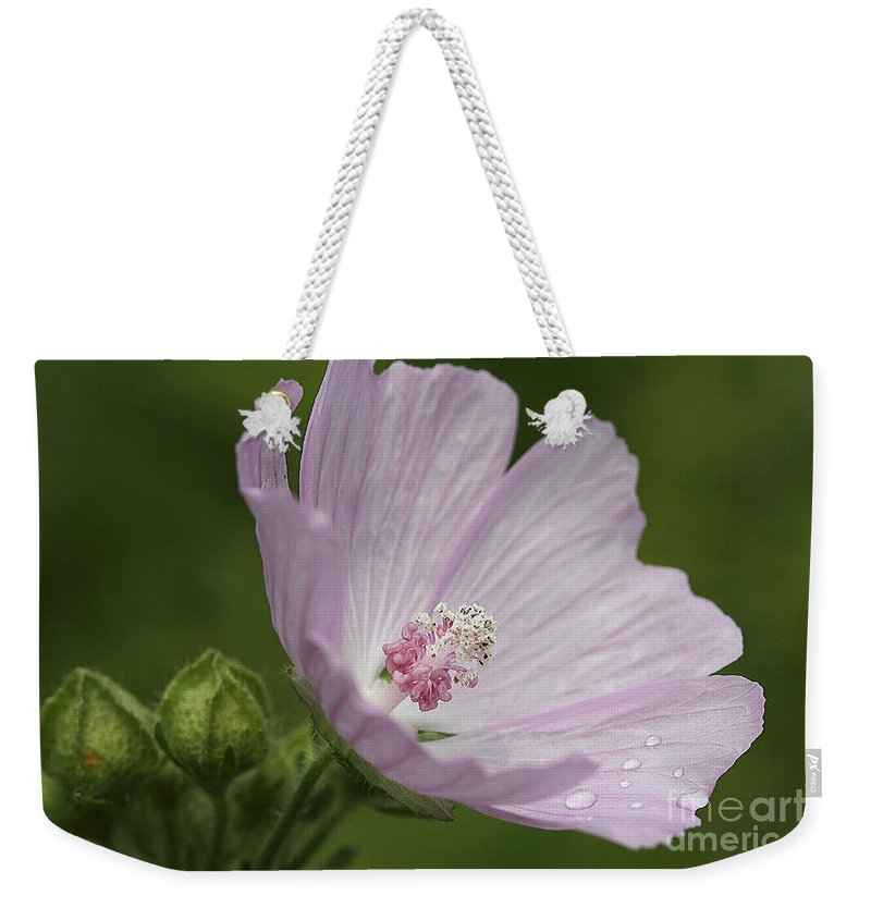 Flower Weekender Tote Bag featuring the photograph Drops Of Dew by Deborah Benoit