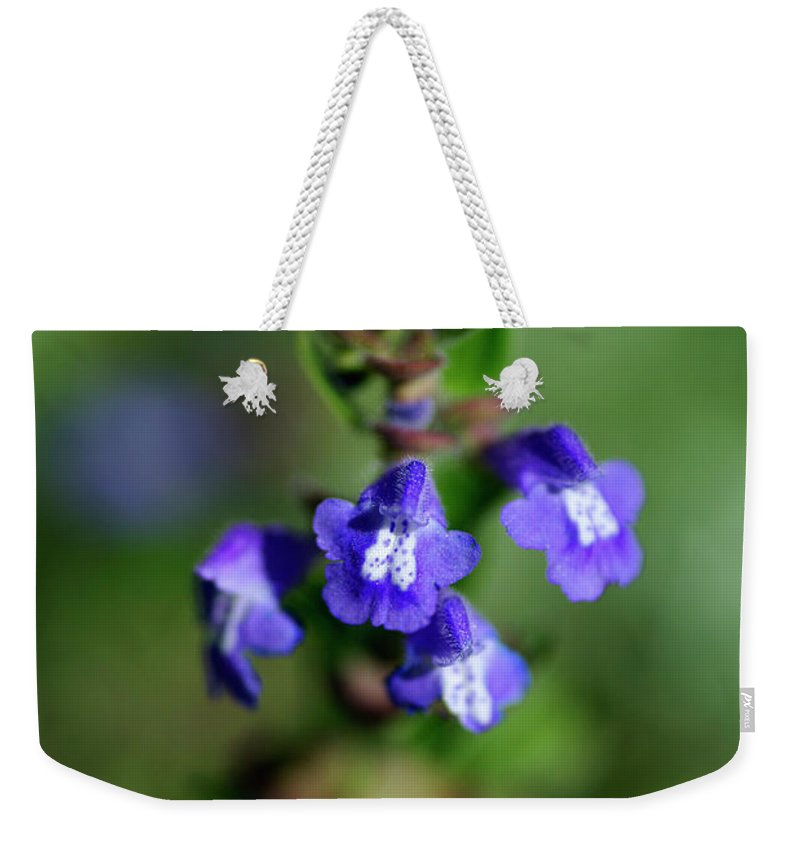 Drummond's Skullcap Weekender Tote Bag featuring the photograph Drummond's Skullcap by Bill Morgenstern
