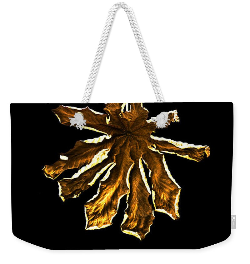 Dry Weekender Tote Bag featuring the photograph Dry Leaf Collection 4 by Totto Ponce