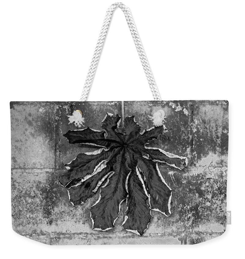 Dry Weekender Tote Bag featuring the photograph Dry Leaf Collection Bnw 1 by Totto Ponce