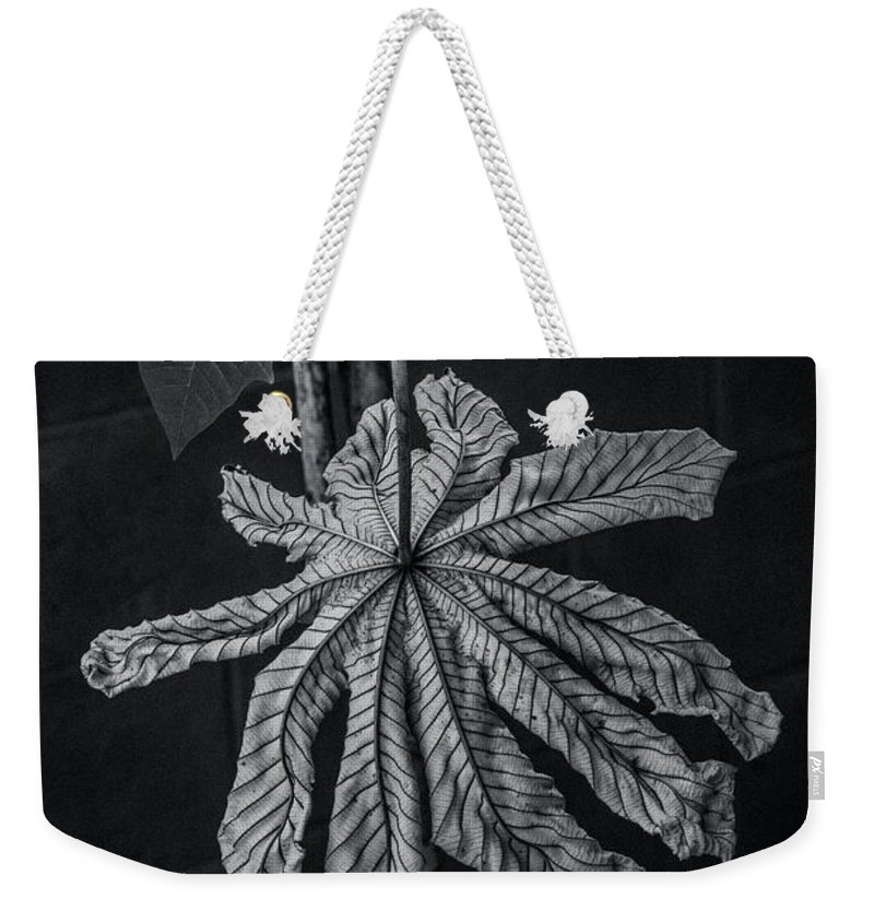 Dry Weekender Tote Bag featuring the photograph Dry Leaf Collection Bnw 2 by Totto Ponce