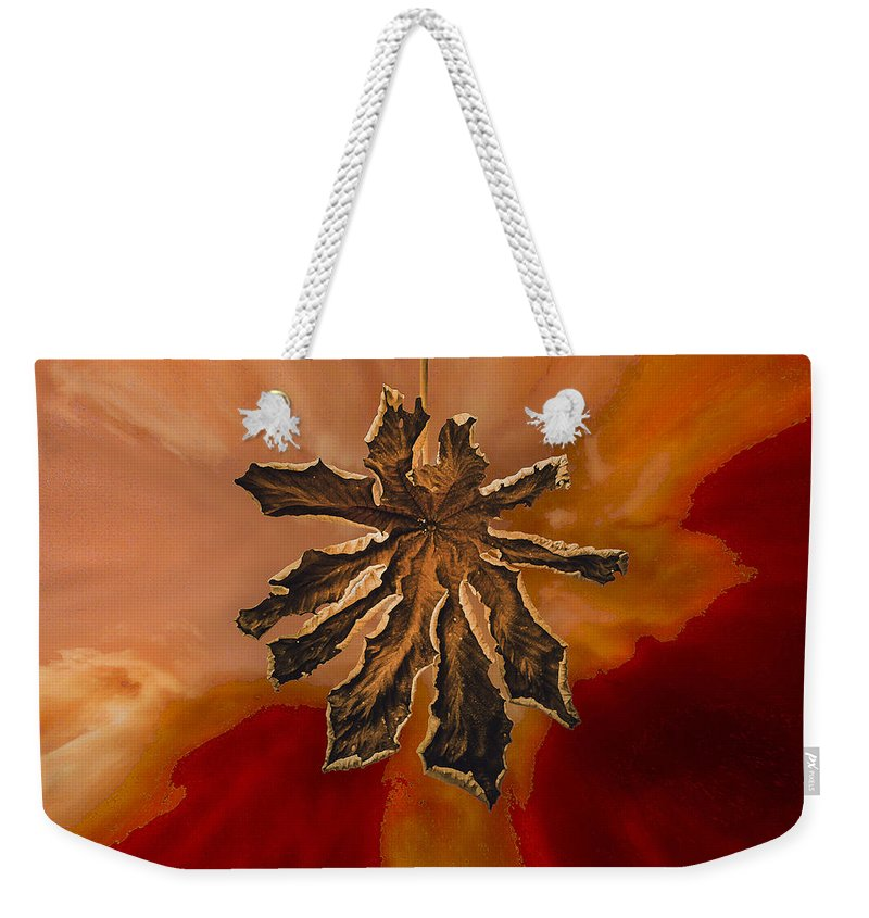 Dry Weekender Tote Bag featuring the photograph Dry Leaf Collection Digital 1 by Totto Ponce