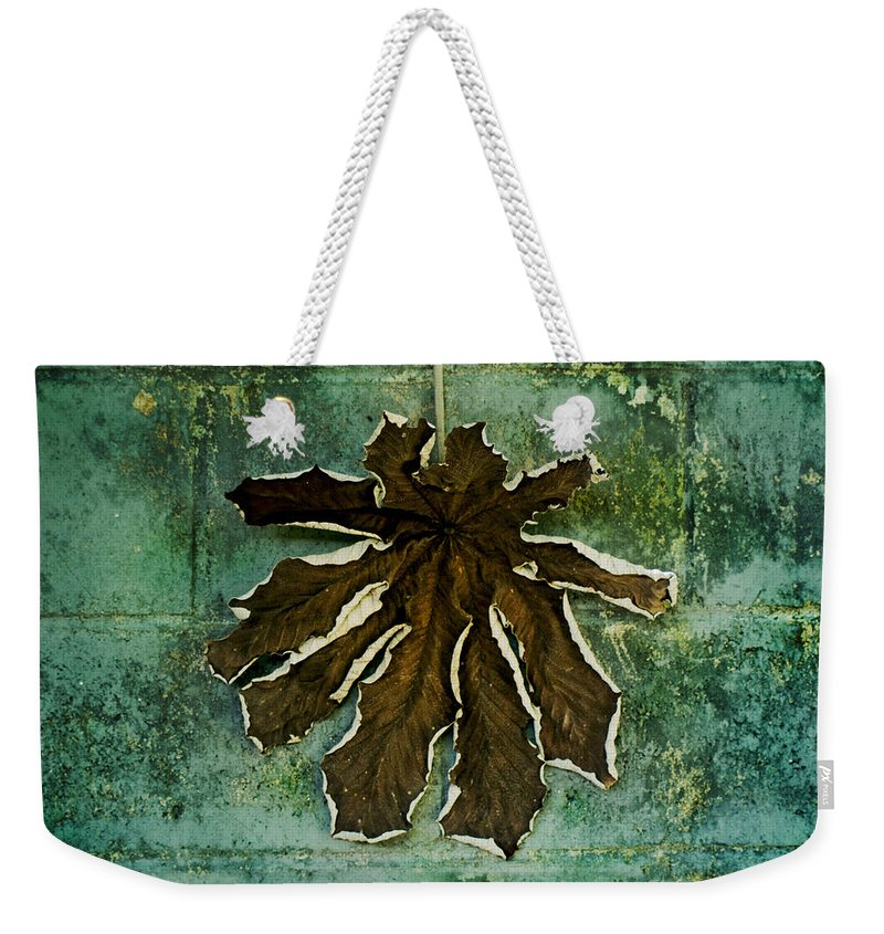 Dry Weekender Tote Bag featuring the photograph Dry Leaf Collection Wall by Totto Ponce
