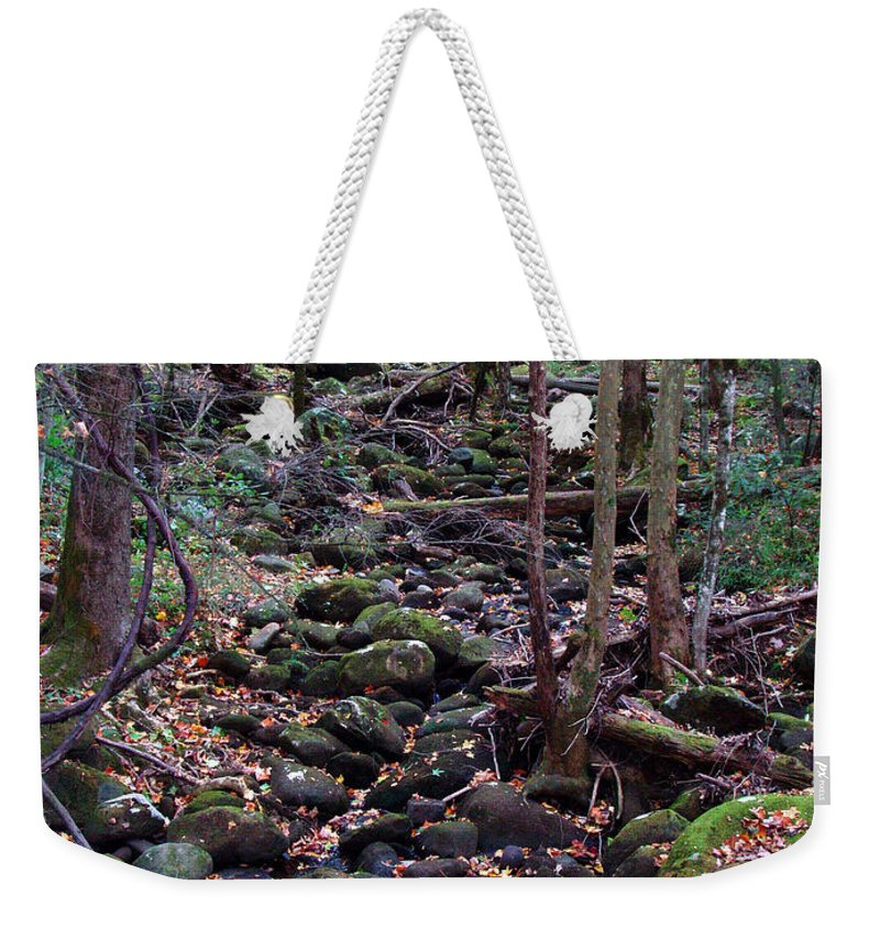 River Weekender Tote Bag featuring the photograph Dry River Bed- Autumn by Nancy Mueller
