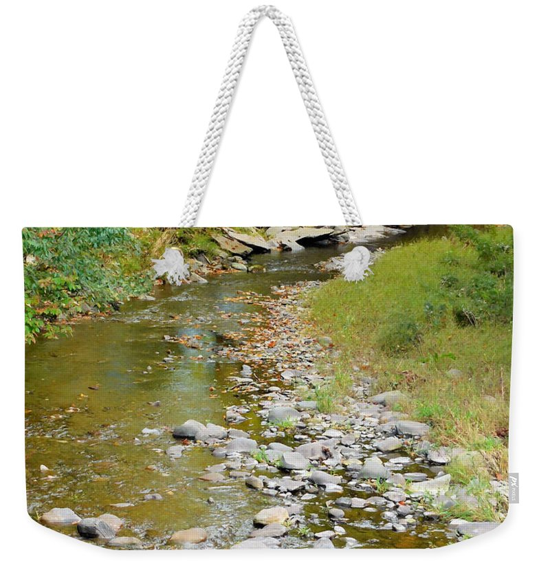Drying Up River Weekender Tote Bag featuring the painting Drying Up River 3 by Jeelan Clark