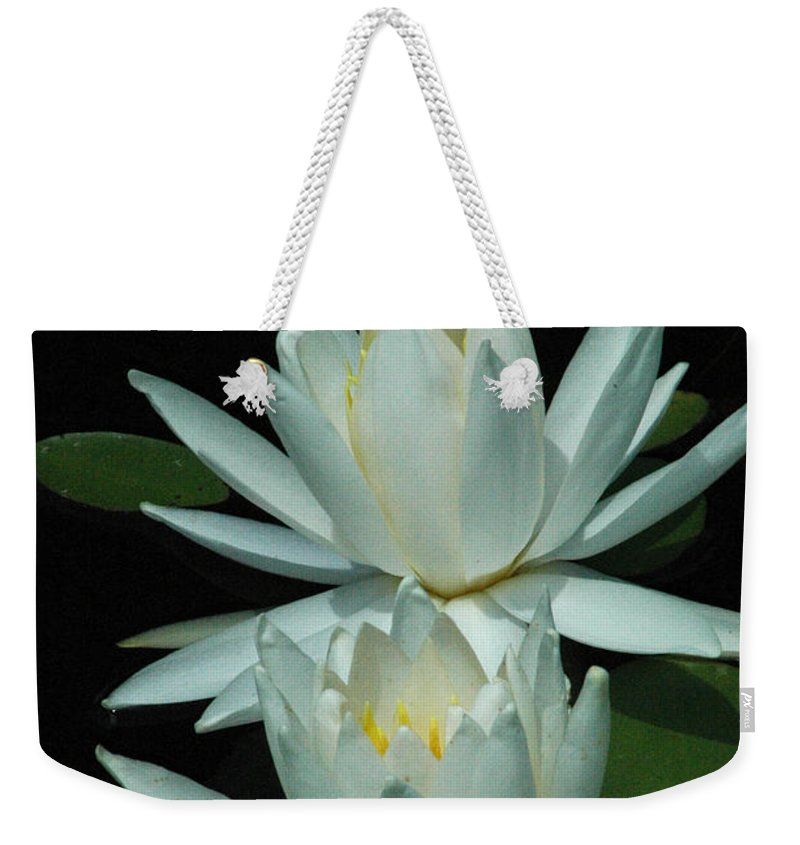 Water Weekender Tote Bag featuring the photograph Dual Lilies by David Weeks