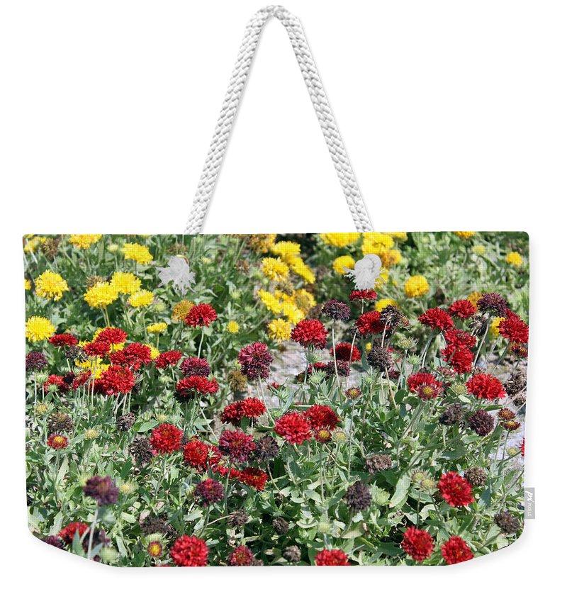 Flower Weekender Tote Bag featuring the photograph Dubai Flowers by Munir Alawi