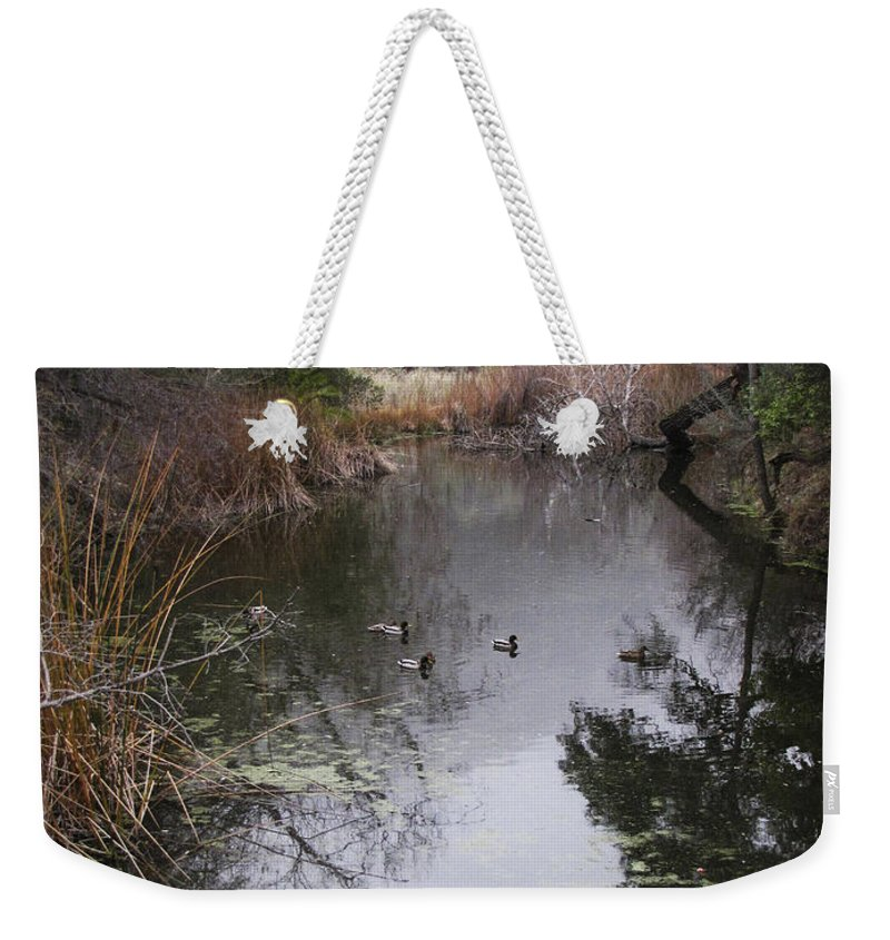 Ducks Weekender Tote Bag featuring the photograph Ducks From The Bridge by Karen W Meyer