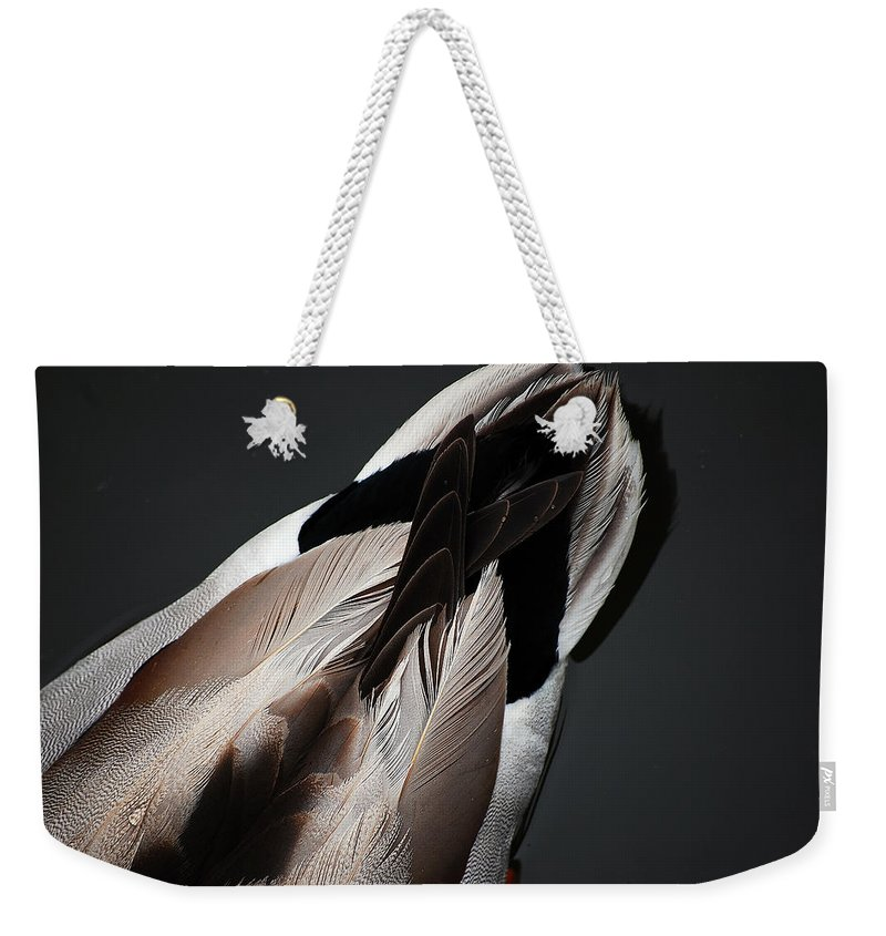 Duck Weekender Tote Bag featuring the photograph Ducktail by Robert Meanor
