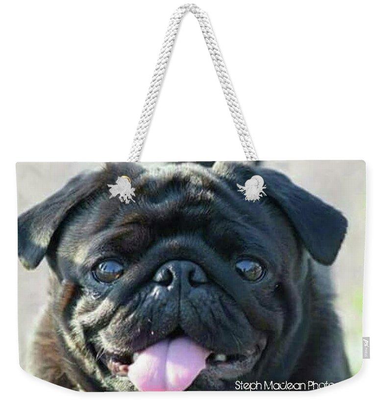 Pug Weekender Bag