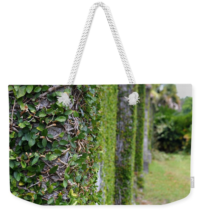 Cumberland Island Weekender Tote Bag featuring the photograph Dungeness Ivy Wall by Debra White