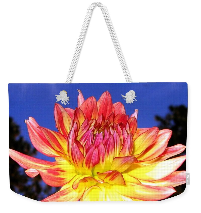 Dahlia Weekender Tote Bag featuring the photograph Dusk And A Dahlia by Will Borden