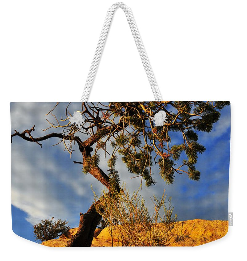 Dusk Dance Weekender Tote Bag featuring the photograph Dusk Dance by Skip Hunt