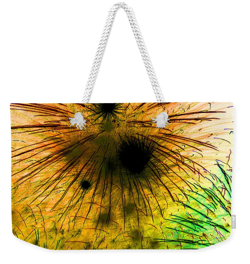 Dust Storm Weekender Tote Bag featuring the photograph Dust Storm by Mary Bedy
