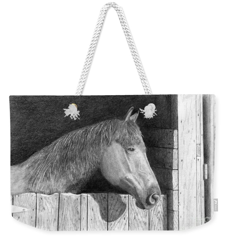 Horse Weekender Tote Bag featuring the drawing Dusty by George Sonner