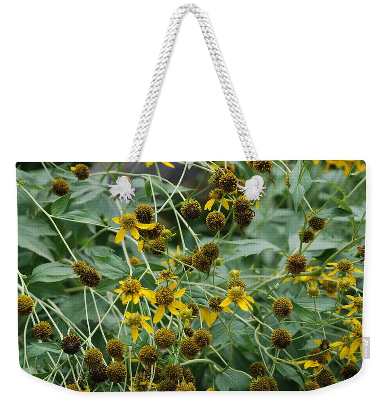 Macro Weekender Tote Bag featuring the photograph Dying Sun Flowers by Rob Hans