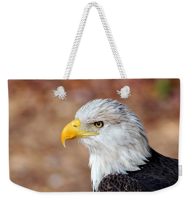 Eagle Weekender Tote Bag featuring the photograph Eagle 10 by Marty Koch