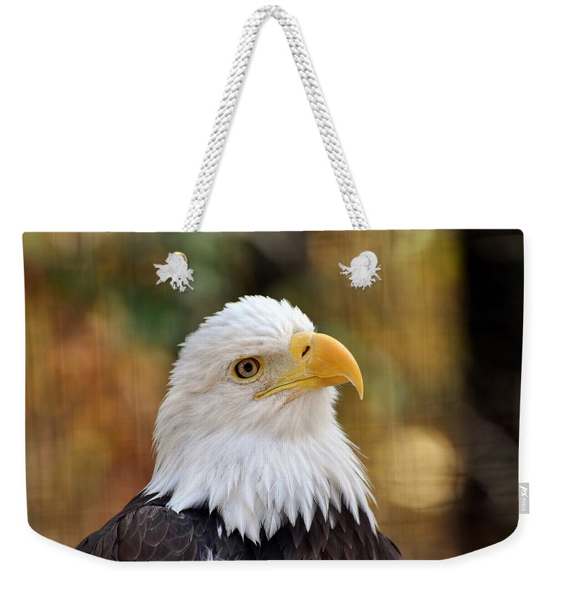 Eagle Weekender Tote Bag featuring the photograph Eagle 6 by Marty Koch