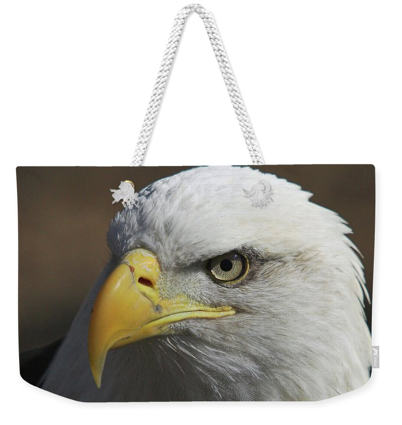 Eagle Weekender Tote Bag featuring the photograph Eagle Eye by Steve Stuller