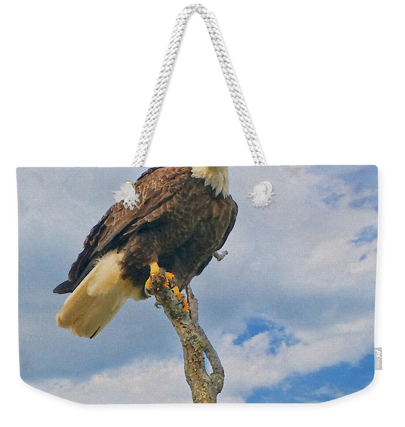 Eagle Weekender Tote Bag featuring the photograph Eagle Eyes by William Jobes