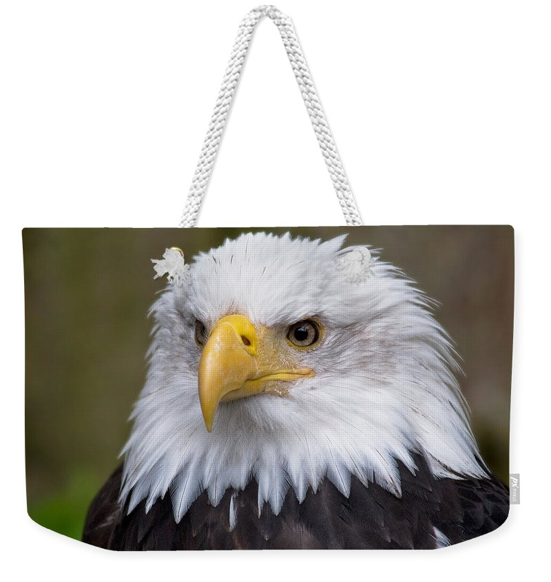 Eagle Weekender Tote Bag featuring the photograph Eagle In Ketchikan Alaska by Michael Bessler