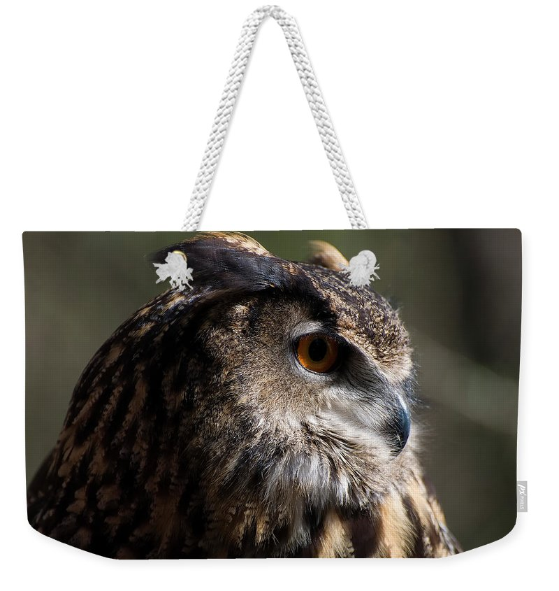 Eagle Owl Weekender Tote Bag featuring the photograph Eagle Owl 4 by Chris Flees