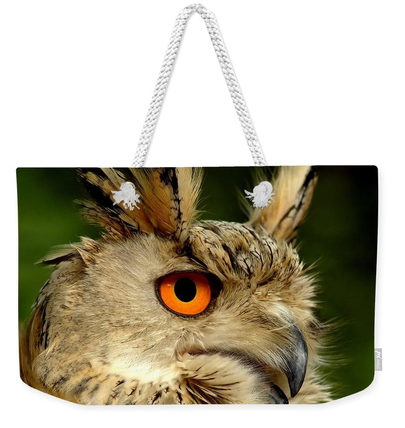 Wildlife Weekender Tote Bag featuring the photograph Eagle Owl by Jacky Gerritsen