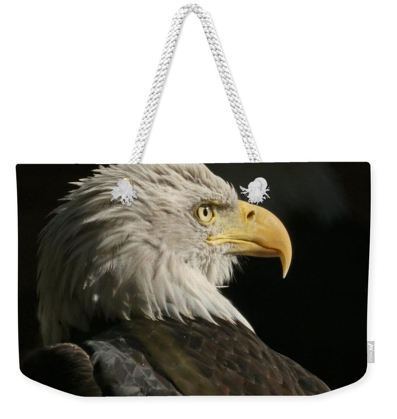 Animal Weekender Tote Bag featuring the photograph Eagle Profile 1 Original Photo by Ernie Echols