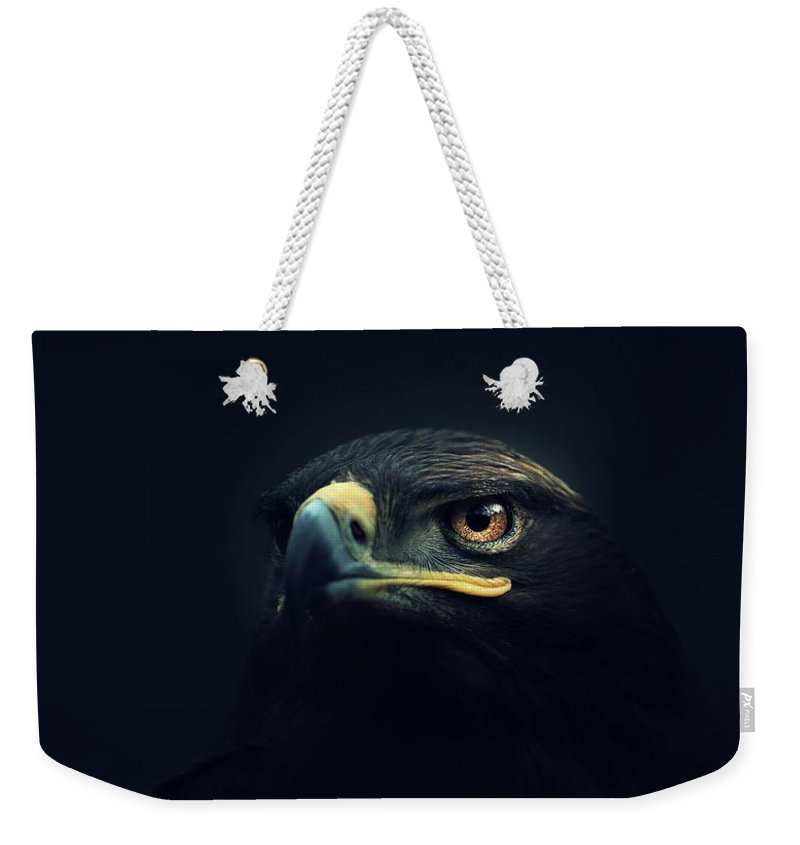 Animal Weekender Tote Bag featuring the photograph Eagle by Zoltan Toth