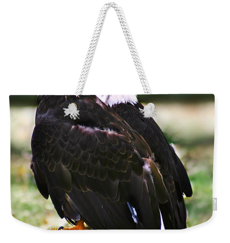 Eagles Weekender Tote Bag featuring the photograph Eagles by Anthony Jones