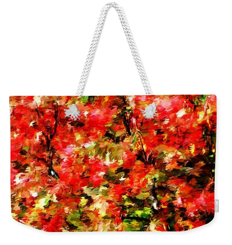 Abstract Digital Photo Weekender Tote Bag featuring the photograph Early Color Painting by David Lane