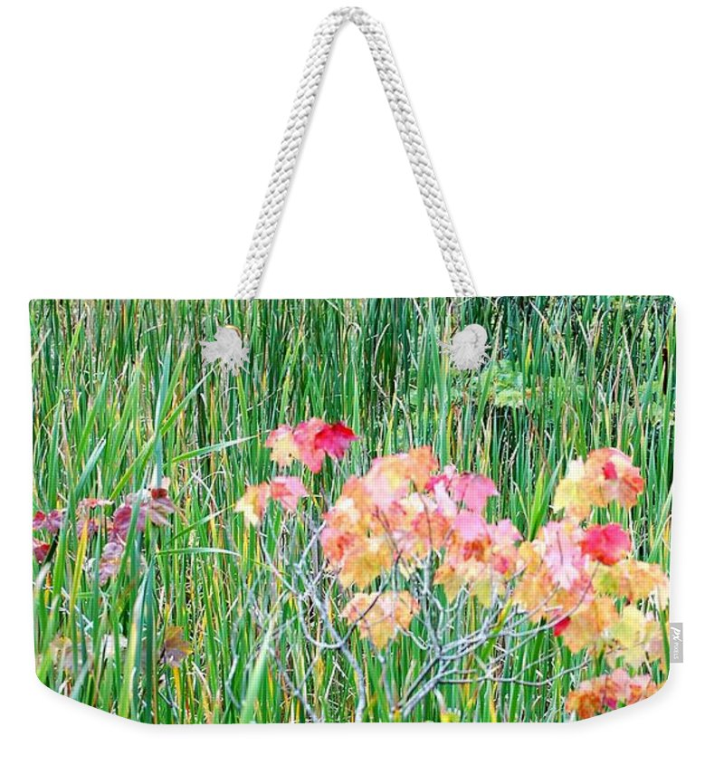 Digital Photograph Weekender Tote Bag featuring the photograph Early Fall Color by David Lane