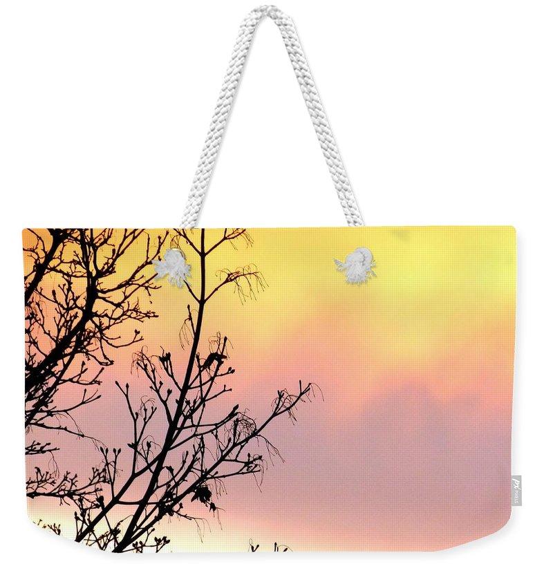 Early Spring Sunset Weekender Tote Bag featuring the photograph Early Spring Sunset by Will Borden