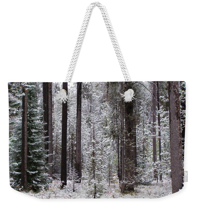 Snow Weekender Tote Bag featuring the photograph Early Winter by DeeLon Merritt
