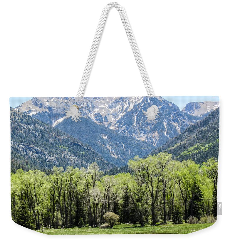 East Fork Weekender Tote Bag featuring the pyrography East Fork Mountain Valley by Pat Sloss