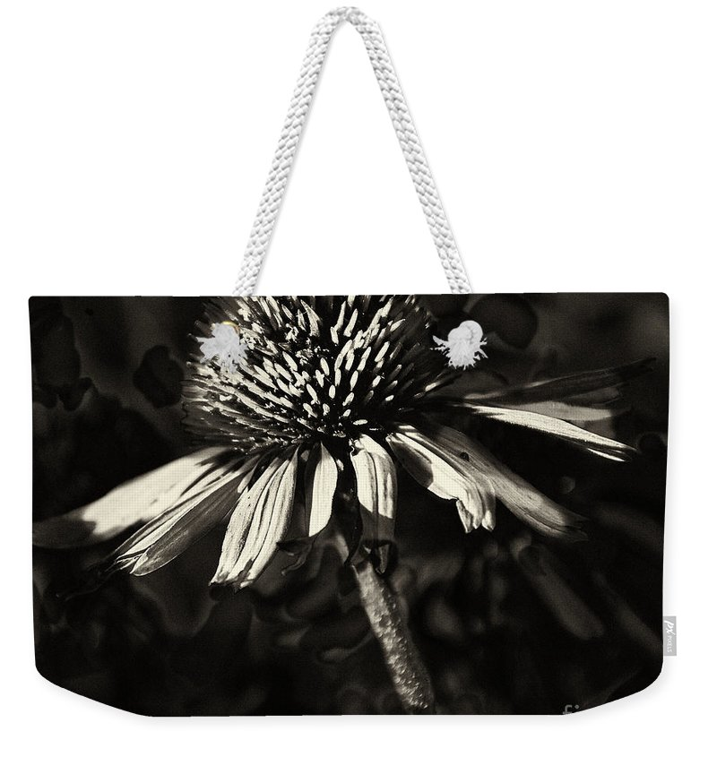 Echinacea Weekender Tote Bag featuring the photograph Echinacea by Charles Muhle