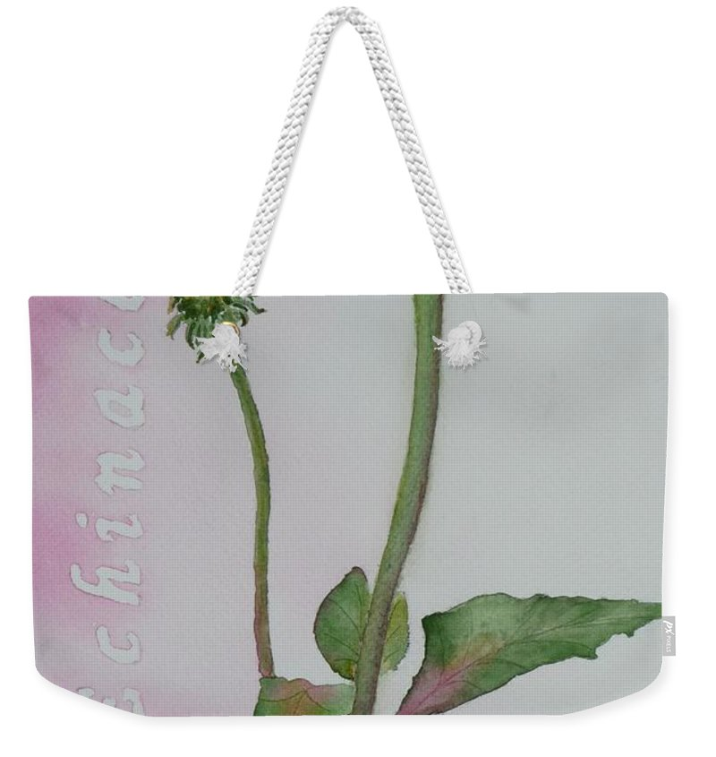 Flower Weekender Tote Bag featuring the painting Echinacea by Ruth Kamenev