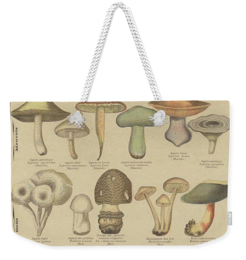 Organic Weekender Tote Bags