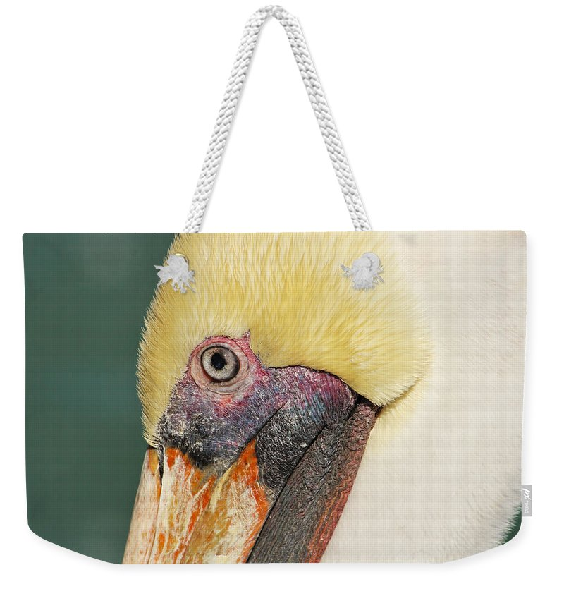 Pelican Weekender Tote Bag featuring the photograph Edward by Marnie Patchett