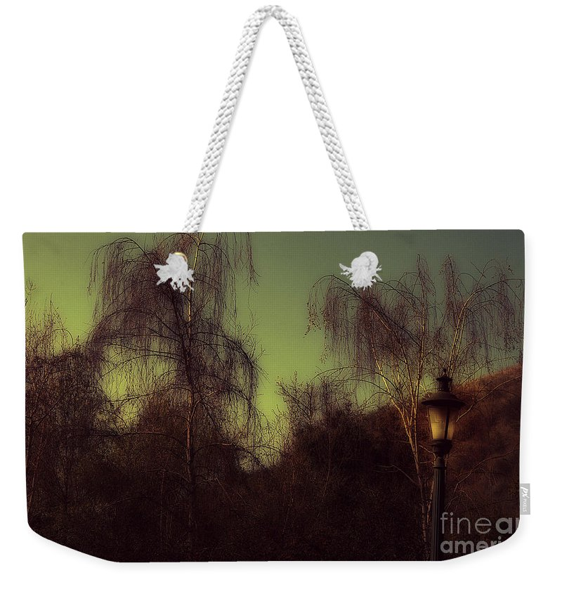 Clay Weekender Tote Bag featuring the photograph Eery Park by Clayton Bruster