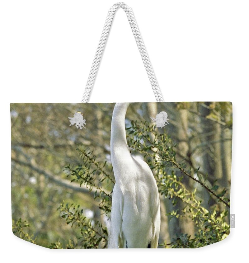 Egret Weekender Tote Bag featuring the photograph Egret 1 by Michael Peychich