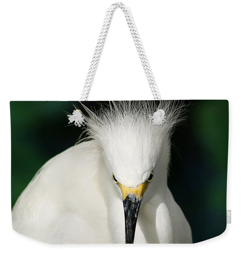Egret Weekender Tote Bag featuring the photograph Egret 2 by Anthony Jones